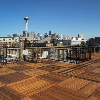RooftopDeck-Needle_9546_Uptown11-full